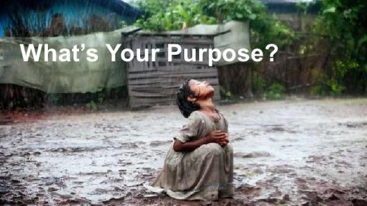 Goodpurpose2012